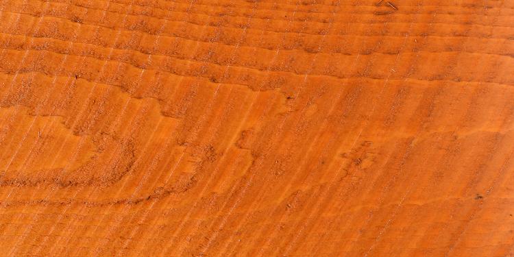 California Gold - Cedar Rough